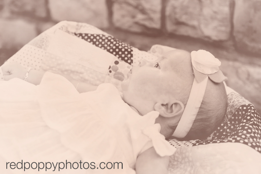 Los Angeles Baby Photographer
