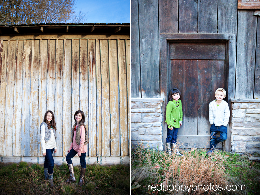 Red Poppy Photos by Stacy Thiot | Utah Family Photographer
