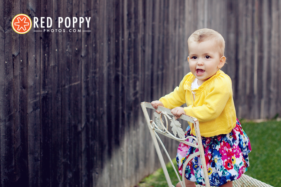Red Poppy Photos by Stacy Thiot | Plano, Texas Photographer