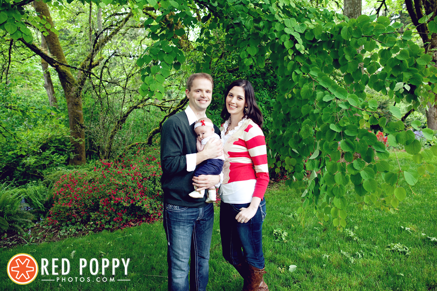 Red Poppy Photos by Stacy Thiot | Portland, Oregon Photographer