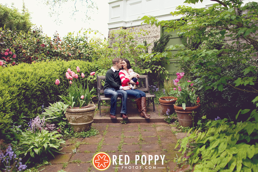 Red Poppy Photos by Stacy Thiot | Salem, Oregon Photographer