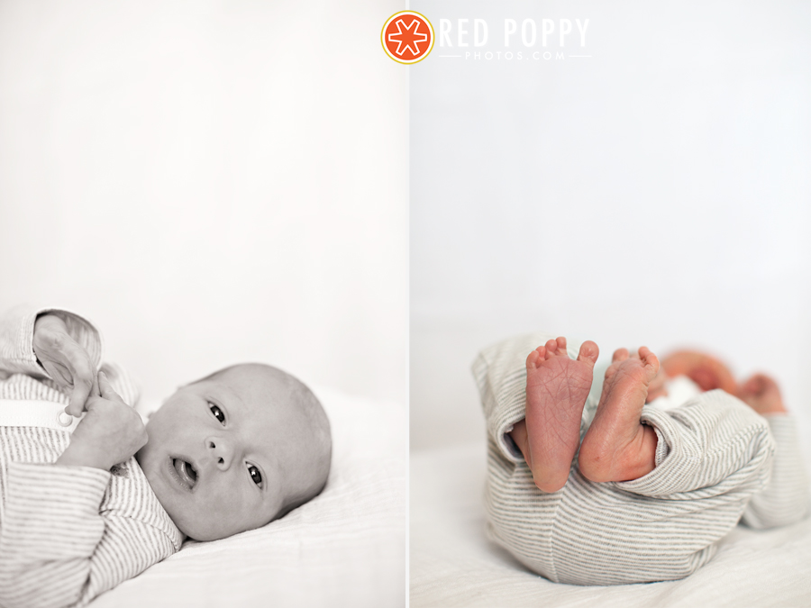 Maxwell Grange | DFW Family Photographer | Red Poppy Photos by Stacy Thiot